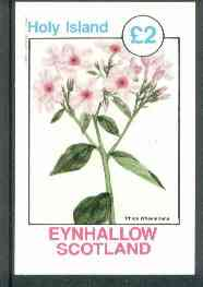 Eynhallow 1982 Flowers #18 (Phlox wheeleriana) imperf deluxe sheet (�2 value) unmounted mint