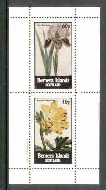 Bernera 1982 Flowers #17 (Iris & Fumaria) perf  set of 2 values (40p & 60p) unmounted mint