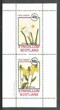 Eynhallow 1982 Flowers #19 (Narcissus & Rudbeckia) perf set of 2 values unmounted mint