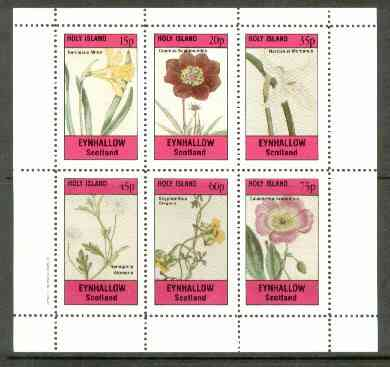 Eynhallow 1982 Flowers #24 (Narcissus x 2, Cosmus, Nemophila, Scyphanthus & Calandrinia) perf set of 6 values unmounted mint