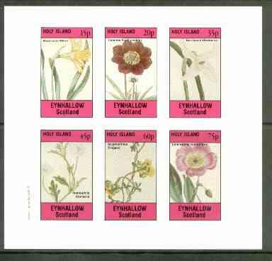 Eynhallow 1982 Flowers #24 (Narcissus x 2, Cosmus, Nemophila, Scyphanthus & Calandrinia) imperf set of 6 values unmounted mint