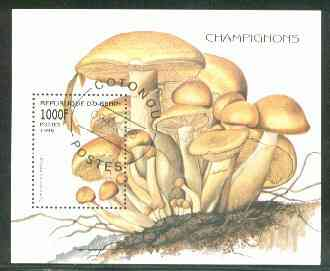 Benin 1998 Mushrooms m/sheet (1000f value) fine cds used