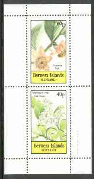 Bernera 1982 Flowers #19 (Guatteria & Vaccineum) perf  set of 2 values (40p & 60p) unmounted mint
