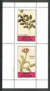 Grunay 1982 Flowers #11 (Limonia & Astragalus) perf set of 2 (40p & 60p) unmounted mint