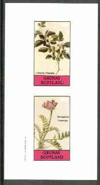 Grunay 1982 Flowers #11 (Limonia & Astragalus) imperf set of 2 (40p & 60p) unmounted mint