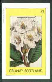 Grunay 1982 Flowers #13 (Rhododendrum) imperf deluxe sheet (�2value) unmounted mint