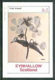 Eynhallow 1982 Flowers #25 (Phlox) imperf deluxe sheet (�2 value) unmounted mint