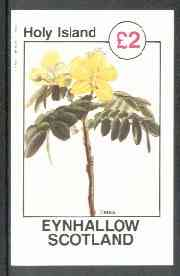 Eynhallow 1982 Flowers #26 (Cassia) imperf deluxe sheet (�2 value) unmounted mint