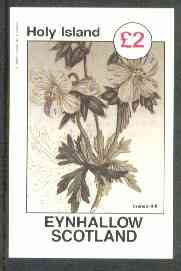 Eynhallow 1982 Flowers #27 (Crane's Bill) imperf deluxe sheet (�2 value) unmounted mint