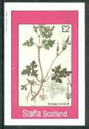 Staffa 1982 Flowers #28 (Stinkinmg Cranesbill) imperf deluxe sheet (�2 value) unmounted mint