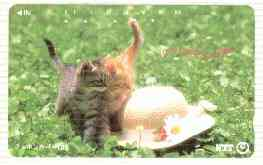 Telephone Card - Japan 105 units phone card showing Two Kittens with straw bonnet (card 111-020)