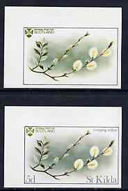 St Kilda 1969 Flowers 5d (Creeping Willow) imperf single with grey omitted (St Kilda, imprint & value) plus imperf normal unmounted mint, stamps on , stamps on  stamps on flowers