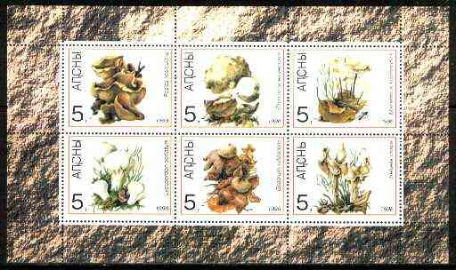 Abkhazia 1998 Mushrooms sheetlet containing complete set of 6 values unmounted mint