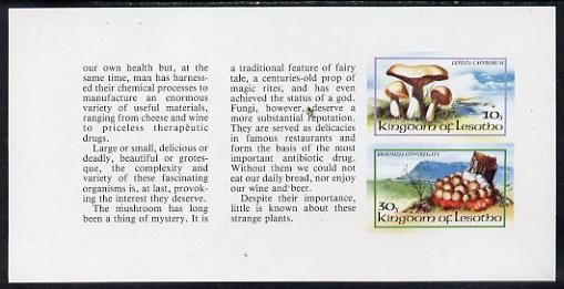 Booklet - Lesotho 1983 Fungi 10s & 30s values in unmounted mint imperf booklet pane (SG 532c), stamps on fungi