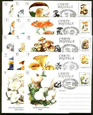 Rumania 1994 Mushrooms complete set of 14 deluxe edition postal stationery cards (30L values) each with 'mushroom' cancellation (Limited edition)