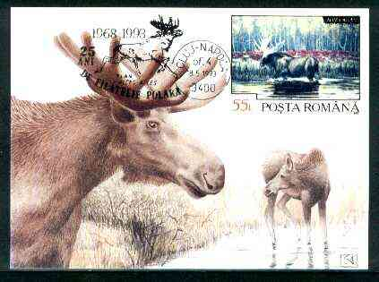 Rumania 1992 Elk 55L (as SG 5484) on maximum card with special illustrated 'Elk' cancellation