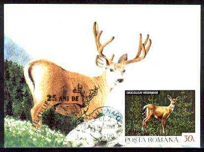 Rumania 1992 White Tailed Deer 30L (as SG 5483) on maximum card with special illustrated 'Deer' cancellation