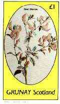 Grunay 1982 Flowers #15 (Rest Harrow) imperf souvenir sheet (�1 value) unmounted mint