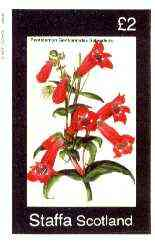 Staffa 1982 Flowers #45 (Pentstemon) imperf deluxe sheet (�2 value) unmounted mint