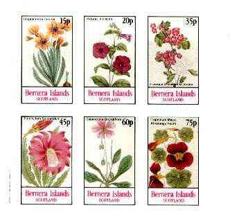 Bernera 1982 Flowers #20 (Petunia, Steptanthera, Crategus etc) imperf  set of 6 values unmounted mint