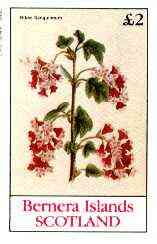 Bernera 1982 Flowers #20 (Ribes Sanguineum) imperf deluxe sheet (�2 value) unmounted mint