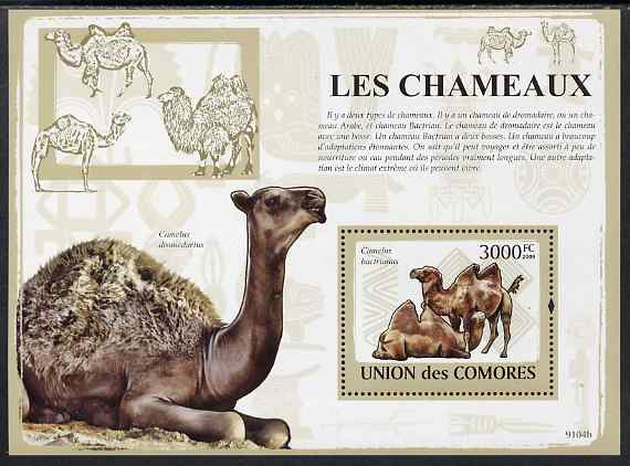 Comoro Islands 2009 Camels perf s/sheet unmounted mint, stamps on animals, stamps on camels