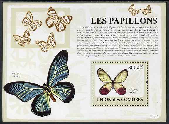 Comoro Islands 2009 Butterflies perf s/sheet unmounted mint