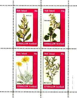 Eynhallow 1982 Flowers #28 (Mimosa, Hermannia x 2 & Othonna) perf set of 4 values unmounted mint