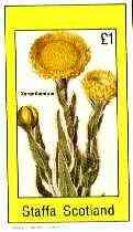 Staffa 1982 Flowers #51 (Xeranthemum) imperf souvenir sheet (�1 value) unmounted mint