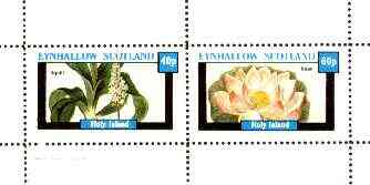 Eynhallow 1982 Flowers #29 (Squill & Bean) perf set of 2 values (40p & 60p) unmounted mint