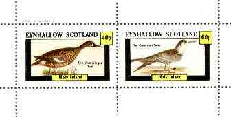 Eynhallow 1982 Birds #27 (Teal & Tern) perf set of 2 values unmounted mint