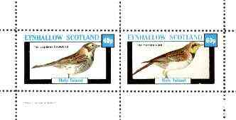 Eynhallow 1982 Birds #28 (Snowbird & Lark) perf set of 2 values unmounted mint