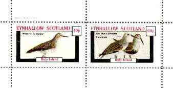 Eynhallow 1982 Birds #34 (Sandpipers) perf set of 2 values unmounted mint