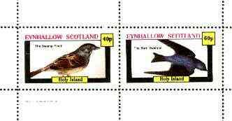 Eynhallow 1982 Birds #35 (Swamp Finch & Barn Swallow) perf set of 2 values unmounted mint