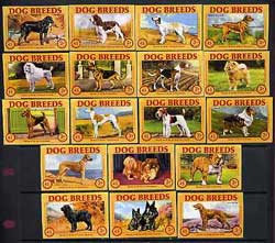 Match Box Labels - complete set of 18 Dog Breeds (Finnish made for Finlays)
