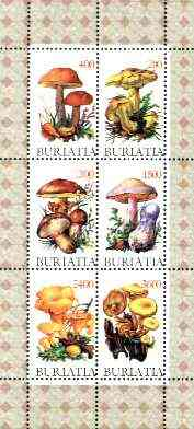 Buriatia Republic 1998 Fungi #01 perf sheetlet containing complete set of 6 values unmounted mint