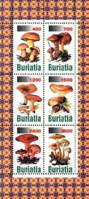 Buriatia Republic 1998 Fungi #02 perf sheetlet containing complete set of 6 values unmounted mint