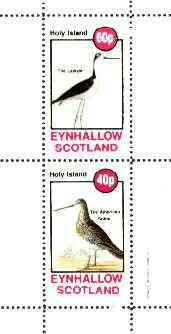 Eynhallow 1982 Birds #40 (Lawyer Bird & Snipe) perf set of 2 values unmounted mint