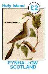 Eynhallow 1982 Birds #13 (Yellow-billed Cuckoo) imperf deluxe sheet (�2 value) unmounted mint