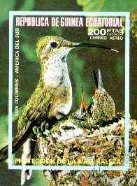 Equatorial Guinea 1974 South American Birds (200p) imperf m/sheet fine cto used, MI BL 149