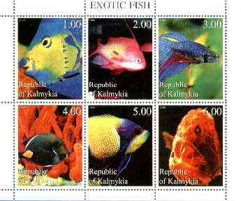 Kalmikia Republic 1999 Exotic Fish perf sheetlet containing complete set of 6 values unmounted mint, stamps on marine life, stamps on fish