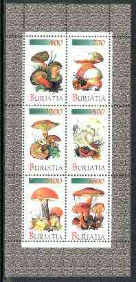 Buriatia Republic 1998 Fungi #05 perf sheetlet containing complete set of 6 values unmounted mint