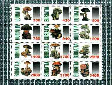 Buriatia Republic 1998 Fungi #07 perf sheetlet containing complete set of 12 values unmounted mint