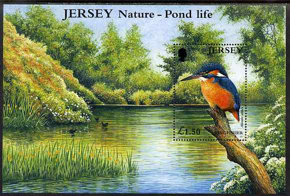 Jersey 2001 Europa - Pond Life perf m/sheet showing Kingfisher, unmounted mint SG MS997