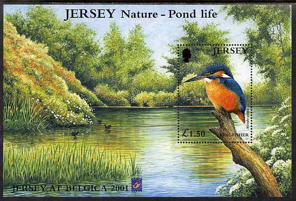 Jersey 2001 Europa - Pond Life perf m/sheet showing Kingfisher with 'Belgica 2001' logo, unmounted mint SG MS998