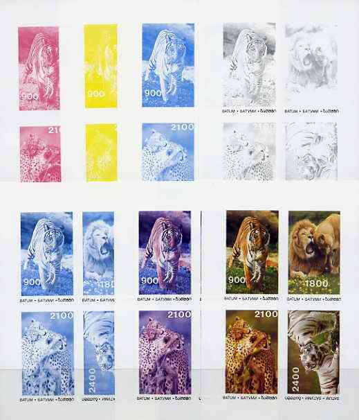 Batum 1995 Big Cats sheet containing complete set of 4, the set of 7 imperf progressive colour proofs comprising the 4 individual colours plus 2, 3 and all 4-colour compo...