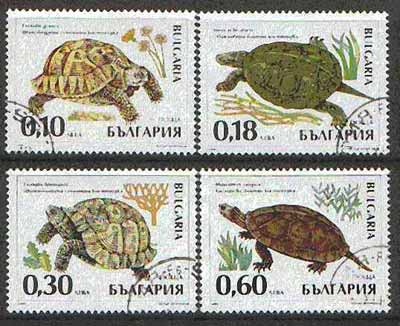Bulgaria 1999 Tortoises complete set of 4 cto used, SG 4277-80*