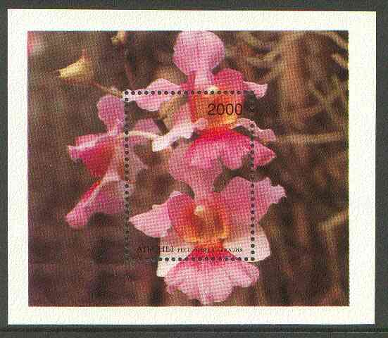 Abkhazia 1996 Orchids perf souvenir sheet (2000 value) unmounted mint