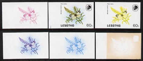 Lesotho 1984 Butterflies Meadow White 60s value x 6 imperf progressive proofs comprising various individual or combination composites