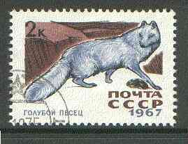 Russia 1967 Arctic Fox 2k from Fur Bearing Animals set fine used, SG 3452*, stamps on animals, stamps on  fox , stamps on foxes, stamps on
